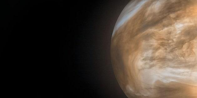 Et s'il y avait de la vie dans les nuages de Venus ?