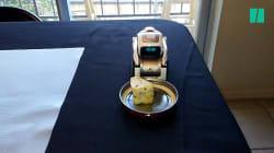 Voici probablement le robot le plus inutile au
