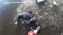 En Estonie, un homme sauvé d'un lac