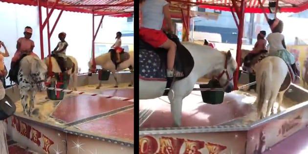 Un manège, composé de poneys vivants, indigne les internautes — Bruxelles