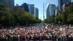 EN FOTOS: Las marchas