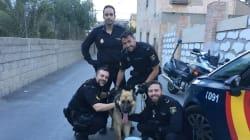 El tuit de la Policía Nacional que recibe miles de aplausos y un reproche por lo que dicen de un perro