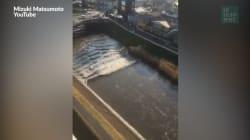 Les images du séisme et du tsunami dans la région de