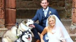 Esta pareja eligió a sus perros como dama de honor y padrino de