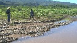 La batalla de las comunidades para decidir sobre asuntos medio ambientales en México que podrían ganar en la