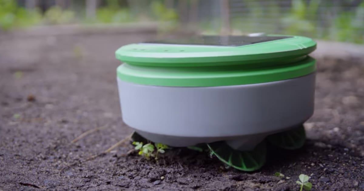 L 39 un des cr ateurs du roomba invente un robot qui arrache - Arrache mauvaise herbe ...