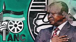 David Mabuza: The Master Political