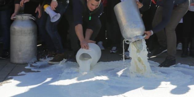 Confronto a oltranza con i pastori sardi, sul latte la scade