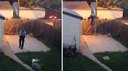 Disturbing Video Shows Cop Shooting Family's Dogs In Fenced