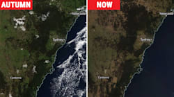 Dramatic Satellite Images Show Green Turn To Brown After Record Warm, Dry