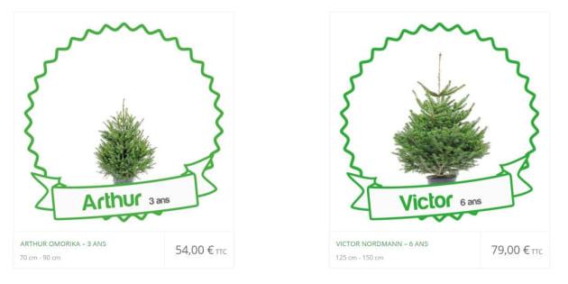 Les sapins à adopter ont un coût, 54 euros pour le plus petit, 79 euros pour les moyens.