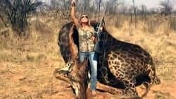 No puedes matar a una jirafa negra y esperar que el mundo te