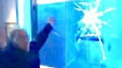 Museum Visitor Completely Freaks After Tapping On 'Shark'