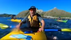 Una foca abofetea a un piragüista con un pulpo que llevaba en la