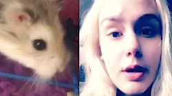 Woman Claims Airline Told Her To Flush Emotional Support Hamster Down