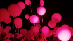 Les images de l'émouvante cérémonie nocturne à Nice, deux ans après