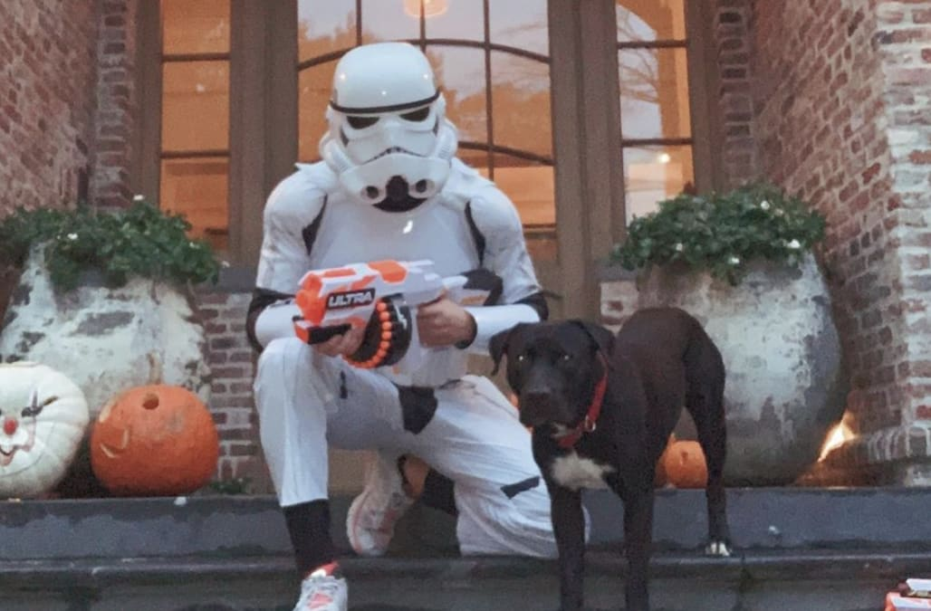 Tom Brady Halloween Costume 2020 Tom Brady's dog doesn't recognize him in his Halloween costume and