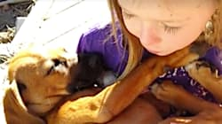 Girl Singing Lullabies To Her Newly Adopted Puppy Will Melt Your