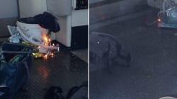 London 'Terrorism': Eyewitnesses Tell Of Panic And 'Burned