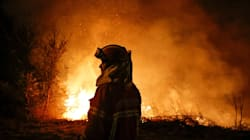 Portugal's Year Of Deadly Forest Fires Has Thrown Its Government Into