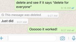 Un nuevo botón de WhatsApp te salvará si le escribes a tu
