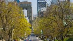 BLOGUE «Québec My Country Mon Pays» ou la nostalgie de ce Montréal anglophone