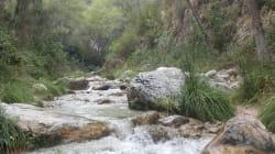 Hallan el cadáver de una joven en Río Chillar, en Nerja
