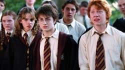 Se confirma lo que todo el mundo sabía de este personaje de 'Harry