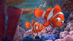 Woman Uses 'Finding Nemo' Plot Line To Convince Tinder Match Her Brother Was