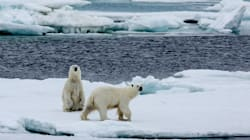 The Arctic Ocean Is Becoming A 'Dead End' For Your