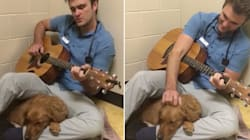 El dulce veterinario que le canta a los cachorros antes de entrar a