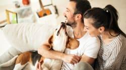 7 sinais de que você está num relacionamento feliz, segundo a