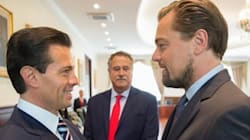 Leonardo DiCaprio's Efforts Prompt Mexico To Commit To Saving Rare