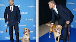 Tom Hardy Shares Moving Tribute After The Death Of His Rescue