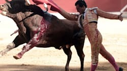 Spanish Matador Dies After Being Gored In Chest By Bull During