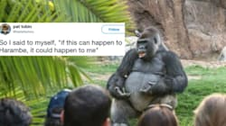 The Internet's Hottest New Meme Is This Gorilla 'Giving A TED