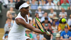 Venus Williams Entered Intersection Legally Moments Before Fatal Crash: