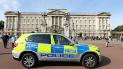 Buckingham Palace Attacker Drove At Police And Reached For Sword, Met