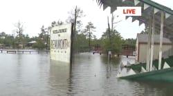 Santuario de reptiles en alerta por inundaciones que podrían liberar a