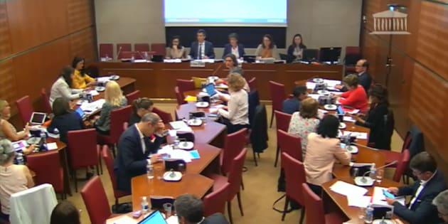 La commission des Affaires culturelles de l'Assemblée nationale mercredi 30 mai.