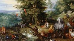 BLOGUE À la recherche du jardin d'Éden: un jardin d'Éden au mont