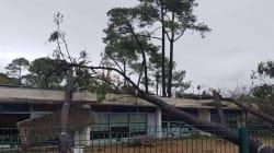 Plusieurs tornades frappent la Vendée et la