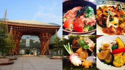 現地の美食家が選ぶ「金沢グルメ」。地元の人も旅行者も知ってほしい5つの穴場店