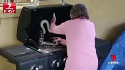 Cette grand-mère australienne déloge les serpents comme