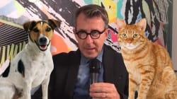 Dans la lutte entre chiens et chats, Jamy a choisi son