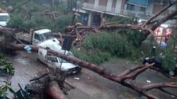 Italia chiusa per vento e pioggia. Maltempo killer, la caduta di alberi fa vittime nel Lazio, a Napoli e nel