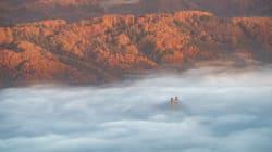 秩父の雲海が、まるで異次元の世界。「ファイナルファンタジーのようだ」と反響広がる