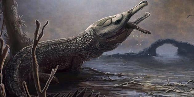 Lemmy Croc