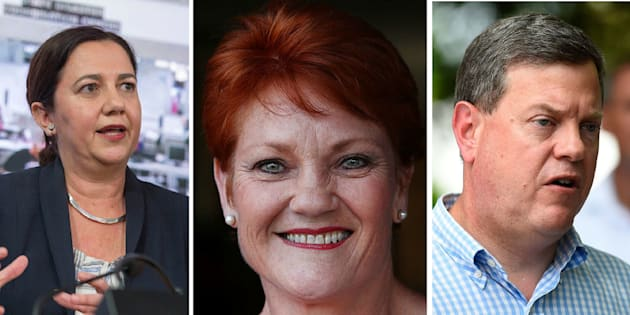 One Nation could land up to ten seats in next week's Queensland election.