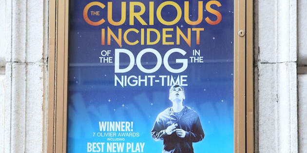 character analysis of christopher in the curious incident of the dog in the night time a novel by ma This essay the curious incident of the dog in the night  of the dog in the night-time' in the novel the  christopher discovered wellington, the dog,.